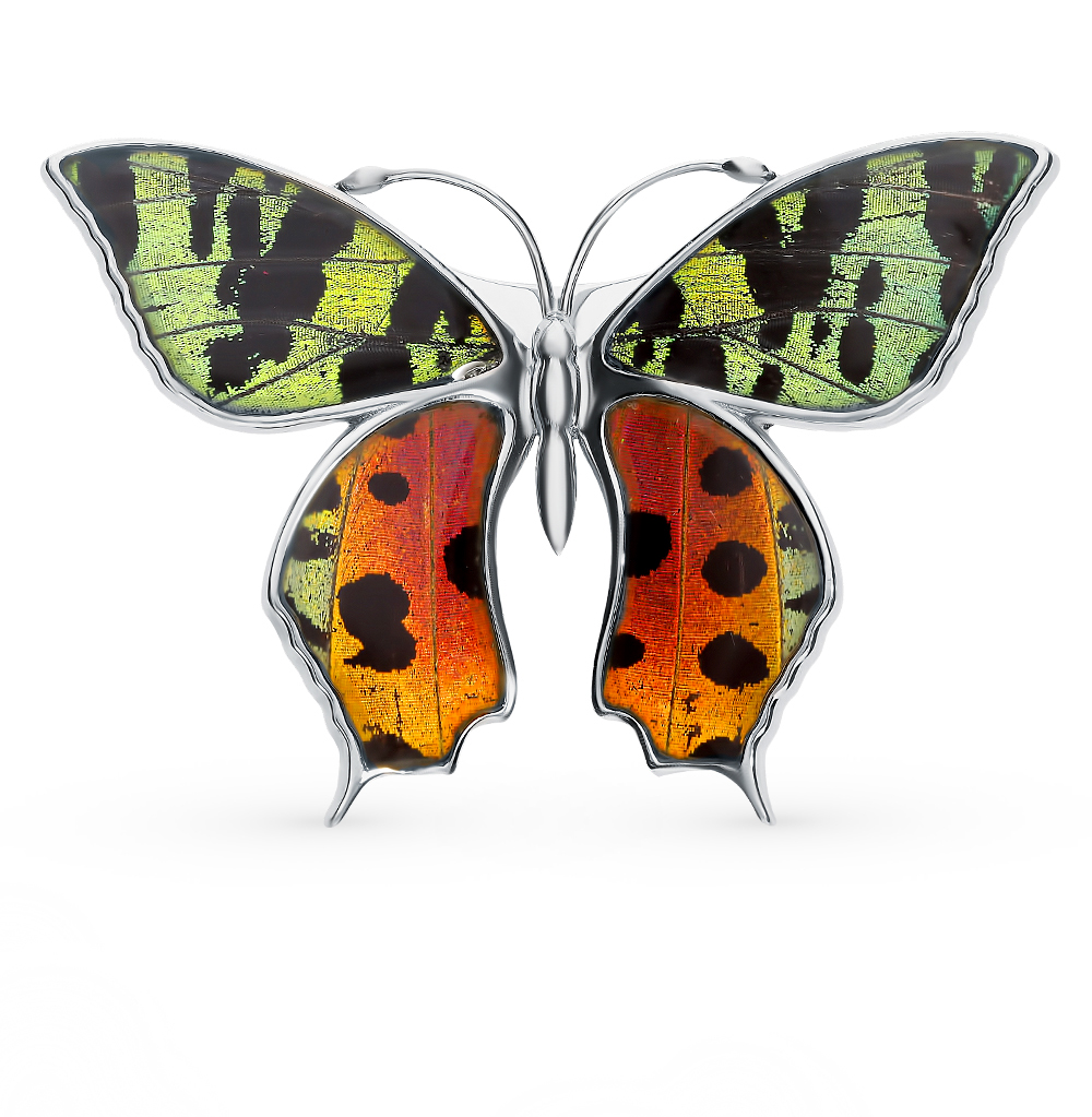 Фото «Серебряная брошь с эмалью и крыльями бабочки, 6.5 см»