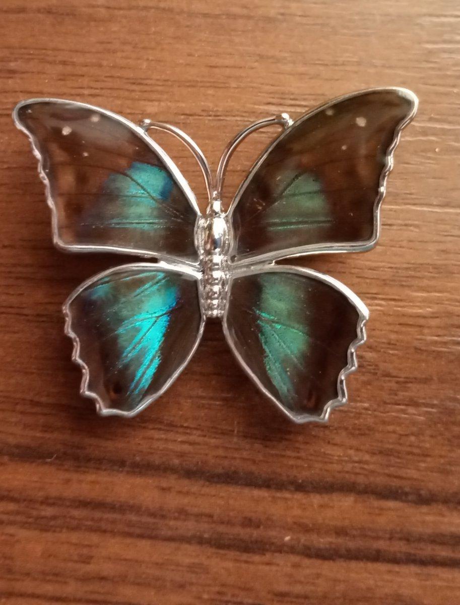 Брошь  с крыльями бабочки.