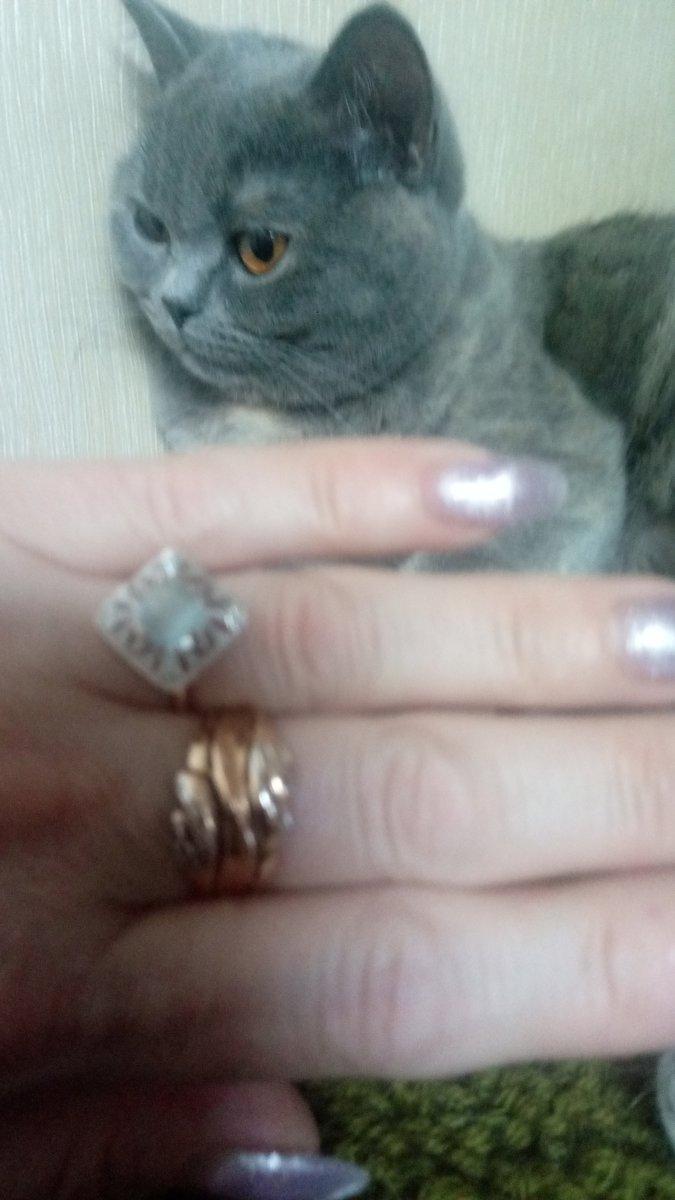 Спасибо за кольцо, очень даже хорошо.