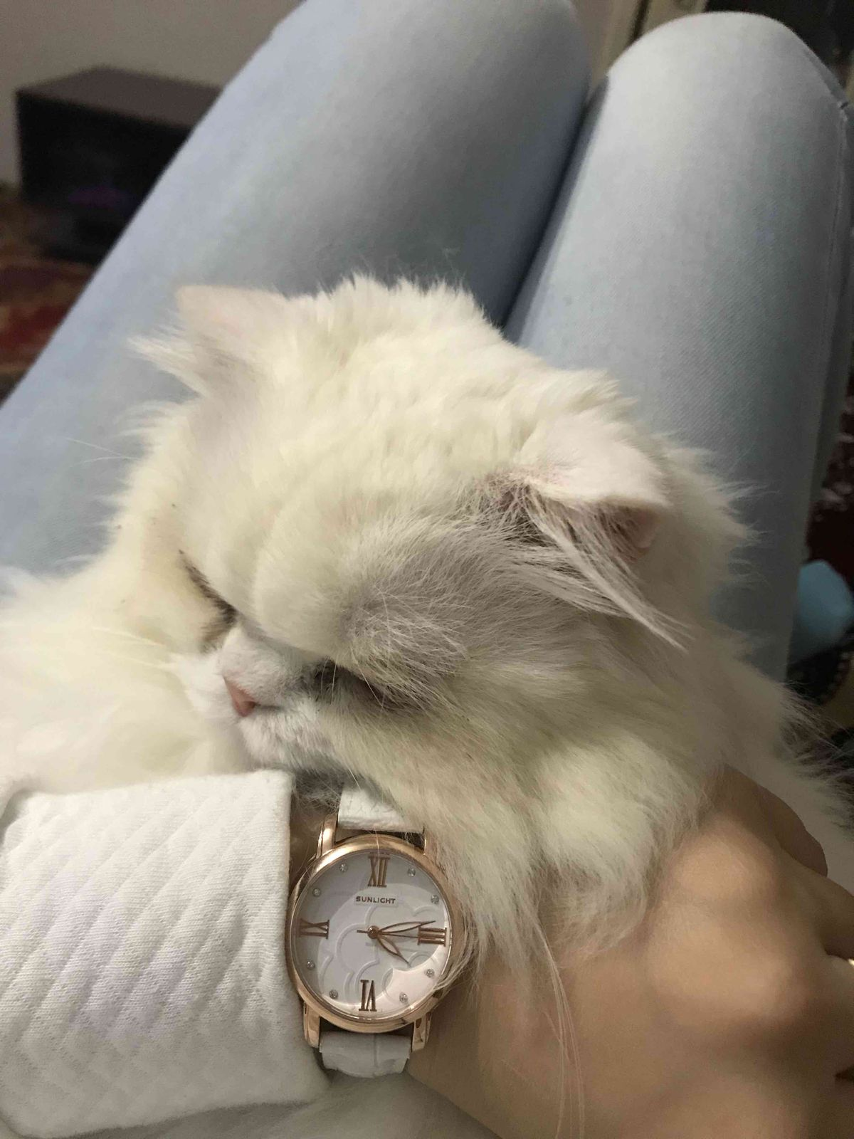 Часы великолепны